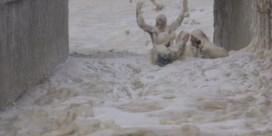 Kust Kaapstad overspoeld door dikke laag zeeschuim