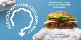 Burger King gebruikt vlees van 'minder vervuilende' koeien