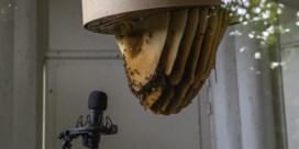 Bijen praten parkpaviljoen in vuur en vlam