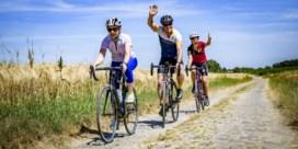 Provincie houdt virtuele fietschallenge met echte prijzen
