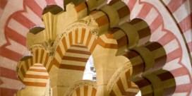 De Hagia Sophia als moskee: een Turkse middelvinger naar het Westen