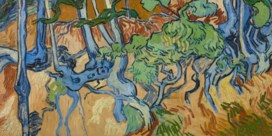 Van Goghs boomwortels zijn gevonden