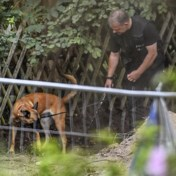 Kelder ontdekt bij opgravingen in Duitse tuin in zoektocht naar Madeleine McCann