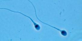 Sperma zwemt 'schroefslag'