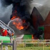Twee loodsen van landbouwbedrijf naast A12 uitgebrand