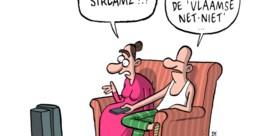 Zeg niet 'Vlaamse Netflix', zeg 'Streamz'