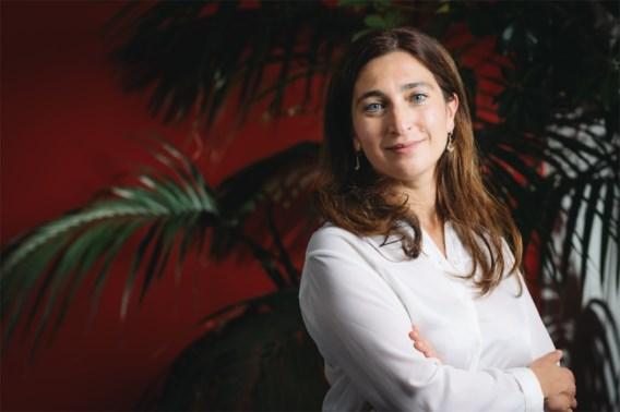 Demir (N-VA): 'Problemen kust liggen aan wanbeleid in Brussel'