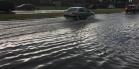 Vooral Antwerpen getroffen door wateroverlast na hevige onweersbuien