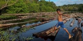 Lockdowns verkleinen ecologische voetafdruk