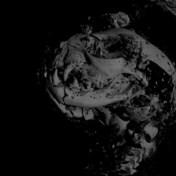 3D-scans tonen binnenkant van eeuwenoude dierenmummies