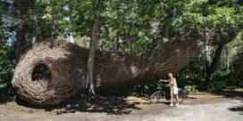 Vlechtwerk met de natuur: de sculpturen van wilgenman Will Beckers