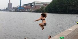 Gent stelt nu toch zwemzone voor in Houtdok