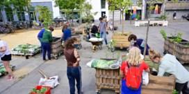 Reizend voedselbos trekt deze maand door centrum Antwerpen