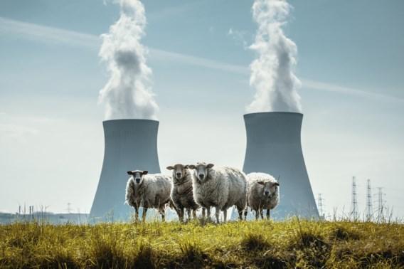 Onderzoek toont aan: Kerncentrales openhouden komt neer op jaarlijkse besparing van meer dan 100 miljoen