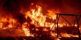 Drie doden bij bosbranden in noorden van Californië