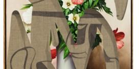 Wat er te zeggen valt met bloemen