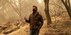 Emotionele gouverneur over bosbranden VS: 'Dit is verdomme een noodtoestand, de perfecte storm'