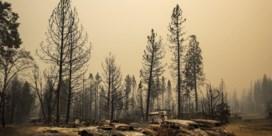 Amerikaanse brandweer strijdt tegen vuurzee én fake news