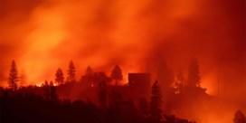 Trump wijt woekerende branden aan 'slecht bosbeheer'