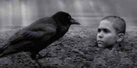 'The painted bird': haast onbekijkbaar gruwelijk