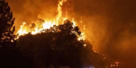 Rook bosbranden Verenigde Staten bereikt Europa