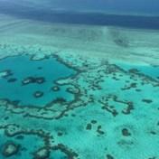 Zeven uur rondvliegen boven Australië, 'voor wie vliegen mist'