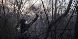 Bolivia roept nationale noodtoestand uit wegens bosbranden