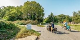 'Bomenkap Mechelen-Noord betekent ramp voor natuur'