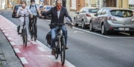 Auto blijft koning, maar fiets wordt kroonprins