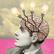 Licht in het brein