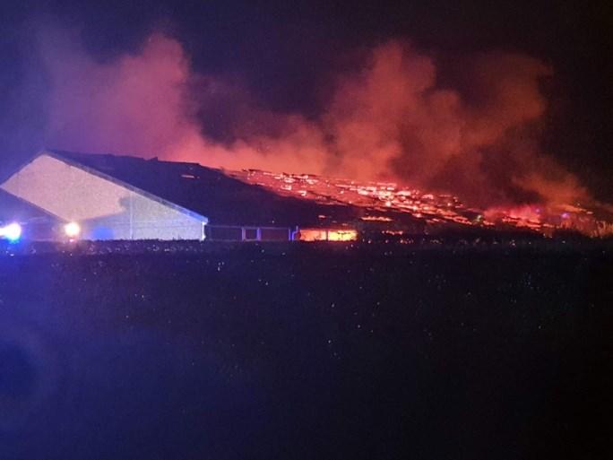 Duizend biggen en honderd zeugen sterven bij zware brand in Damme
