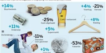 Bol.com en buurtwinkels winnaars, vakanties grote verliezer van crisis