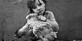 Meisje met de kip, Roux, Charleroi Stephan Vanfleteren, 2011