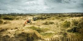 Het stuift weer in de duinen