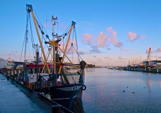 Vlaamse vissers willen zich straks beroepen op 'eeuwige toegang' tot Britse wateren