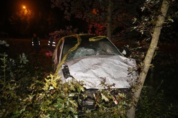 Wagen gaat van snelweg af en duikt struikgewas in: inzittenden gewond