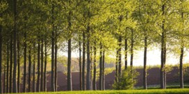Bebossing stuit op verzet Boerenbond