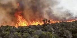 Brand op Kilimanjaro vermoedelijk veroorzaakt door lokale gids