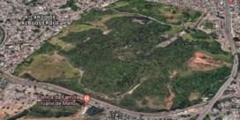 Dan toch geen F1-bolides in Rio's groene long