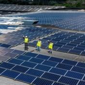 AB InBev brouwt 30 miljoen pintjes per jaar met zonne-energie