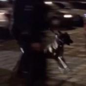 Man die arrestatie filmt in Gent hardhandig aangepakt en gebeten door politiehond