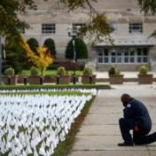 Coronacijfers anders voorgesteld: Amerikaanse kunstenares plant vlagje voor elke overleden persoon
