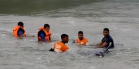 Massastranding grienden in Sri Lanka: 120 dieren gered