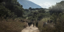 Vijftien tieners onthoofd bij vermoedelijk jihadistisch geweld in Mozambique