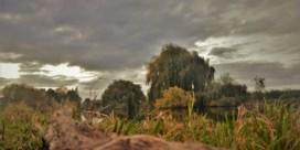Zwaarbewolkte dinsdag, woensdag blijft het droog