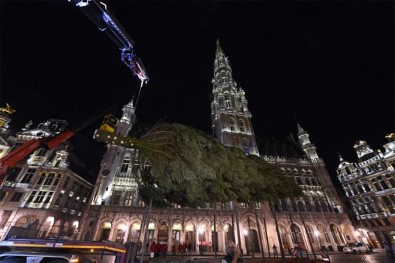 Achttien meter hoge kerstboom op Brusselse Grote Markt