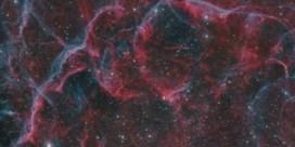 Zijn oude bomen stille getuigen van supernova's?