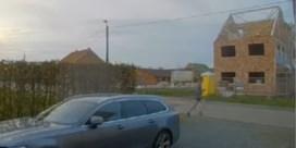 Politie verspreidt camerabeelden van jogger die hondje doodstak: al meerdere tips ontvangen