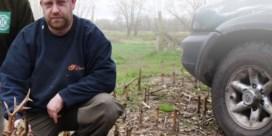 Veldwachter schiet zelf illegaal reeën dood: 'Twintig met de feestdagen en je hebt 5.000 euro'