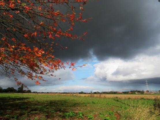Bewolkt en regenachtig weekend, volgende week beterschap